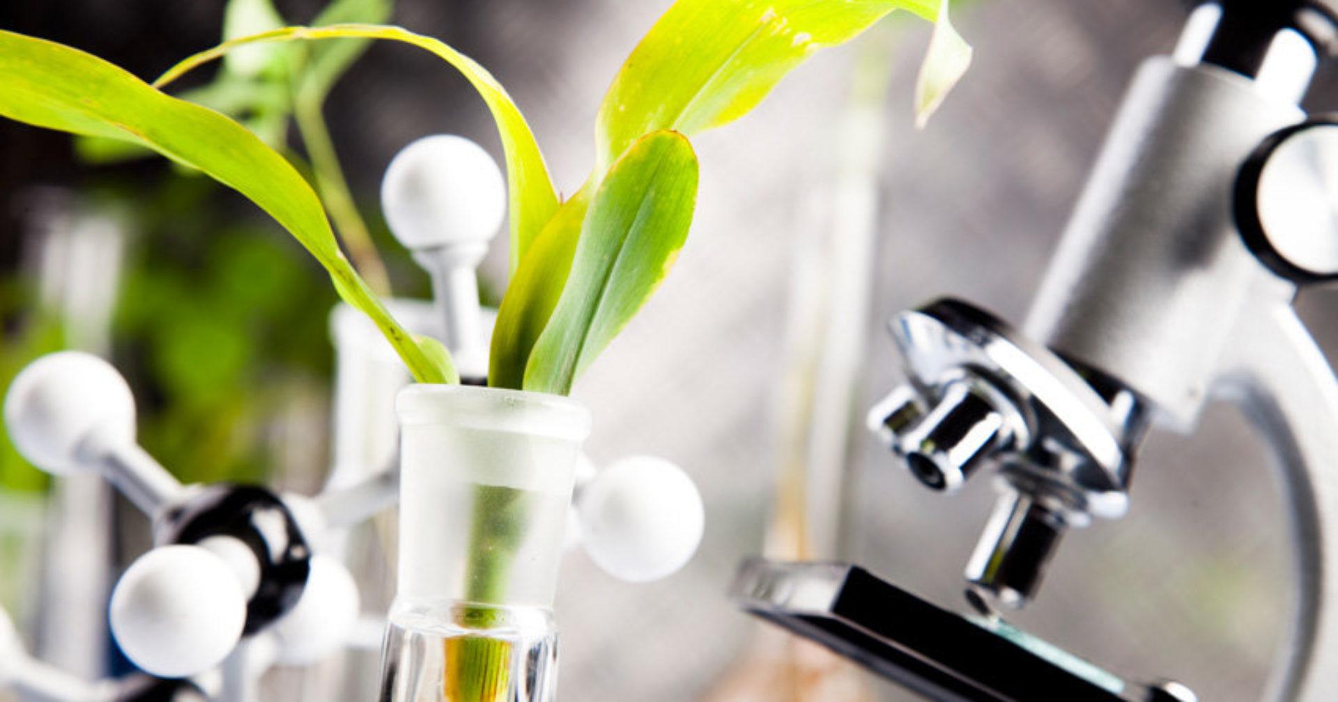 Новітні агротехнології